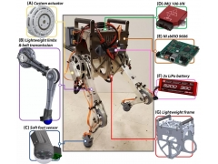 Science Robotics|MIT新型两足机器人,可利用人类反射来行走和保持平衡!